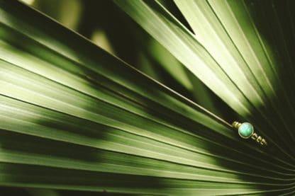 Agathe Desbois Bague Bambou