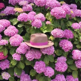Chapeau Portofino Rose | Lastelier | Accessoires | Shop |Face to Face |